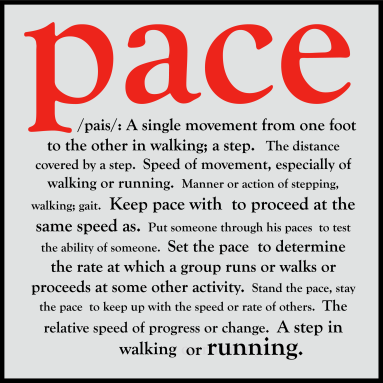 The definition of the word Pace